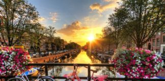 10 things to do and see in Amsterdam