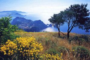 Monte Solaro in Capri