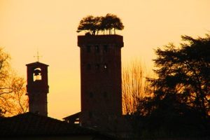 Torre Giunigi and Torre delle Ore in Lucca